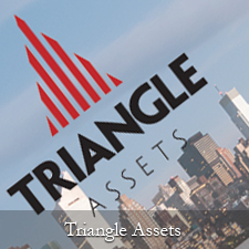 triangle-assets-thumbnail
